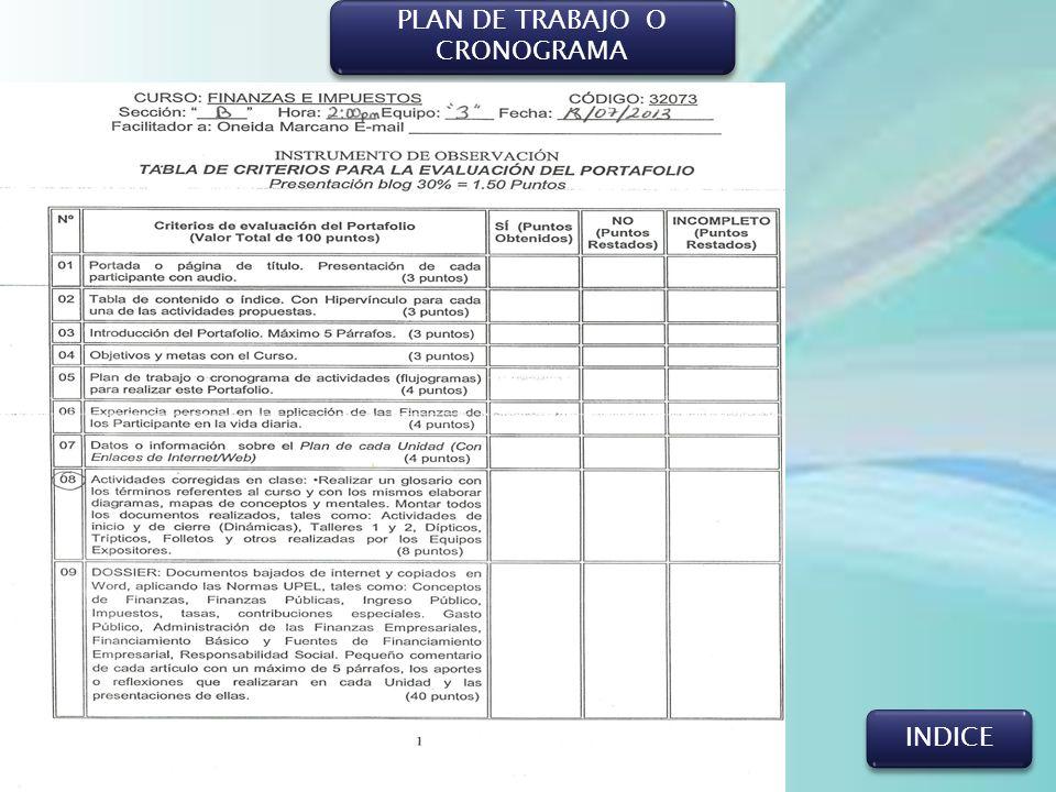 PLAN DE TRABAJO O CRONOGRAMA