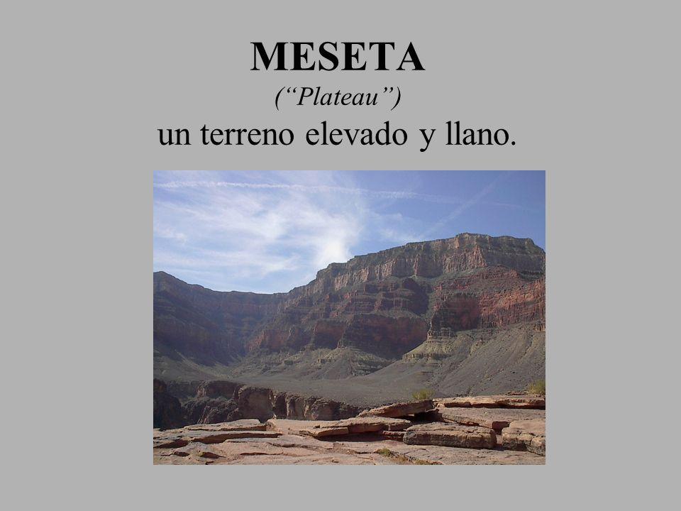 MESETA ( Plateau ) un terreno elevado y llano.