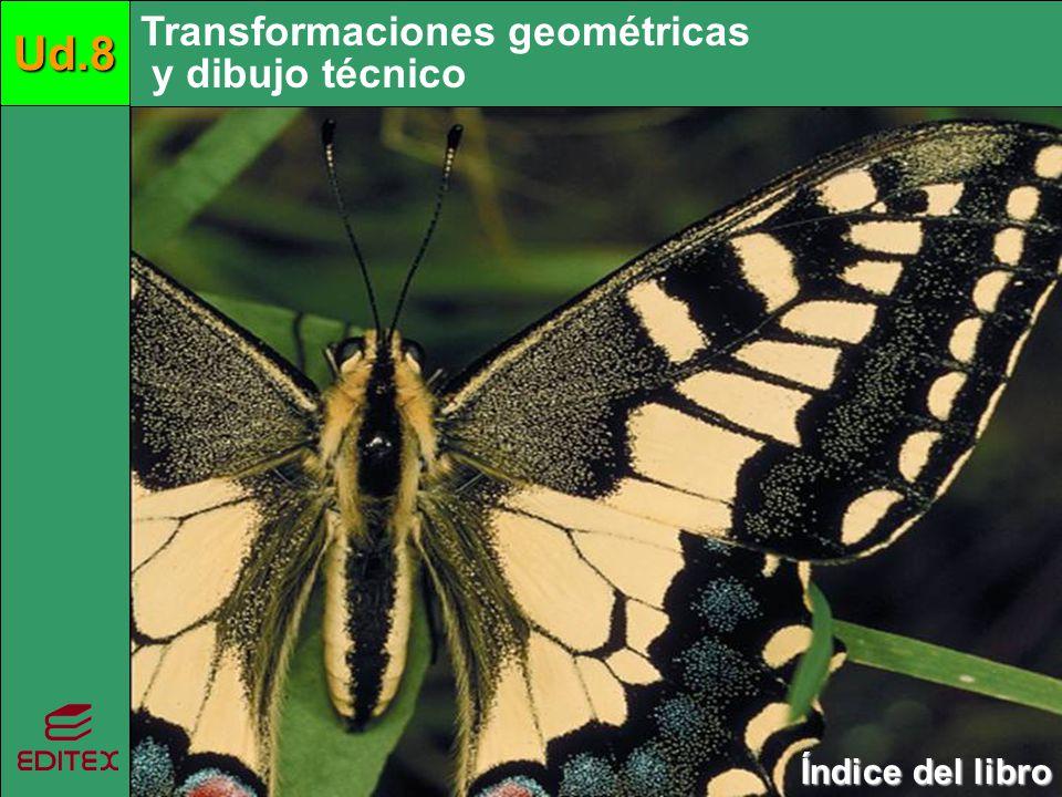 Ud.8 Ud.8 Ud.8 Transformaciones geométricas y dibujo técnico