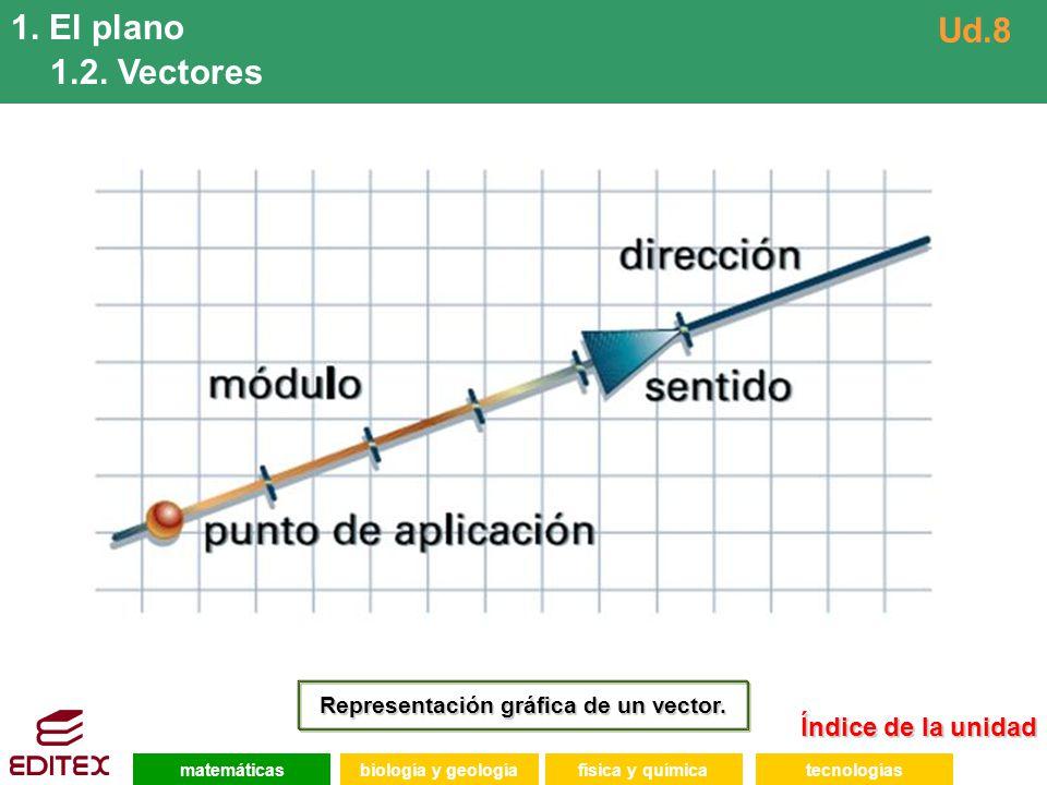 Representación gráfica de un vector.