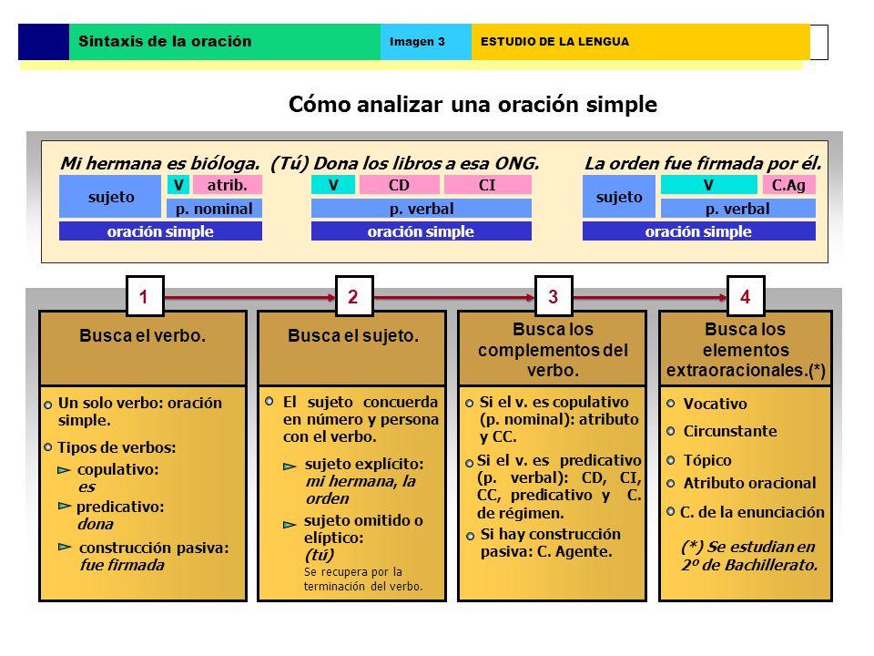 Cómo analizar una oración simple