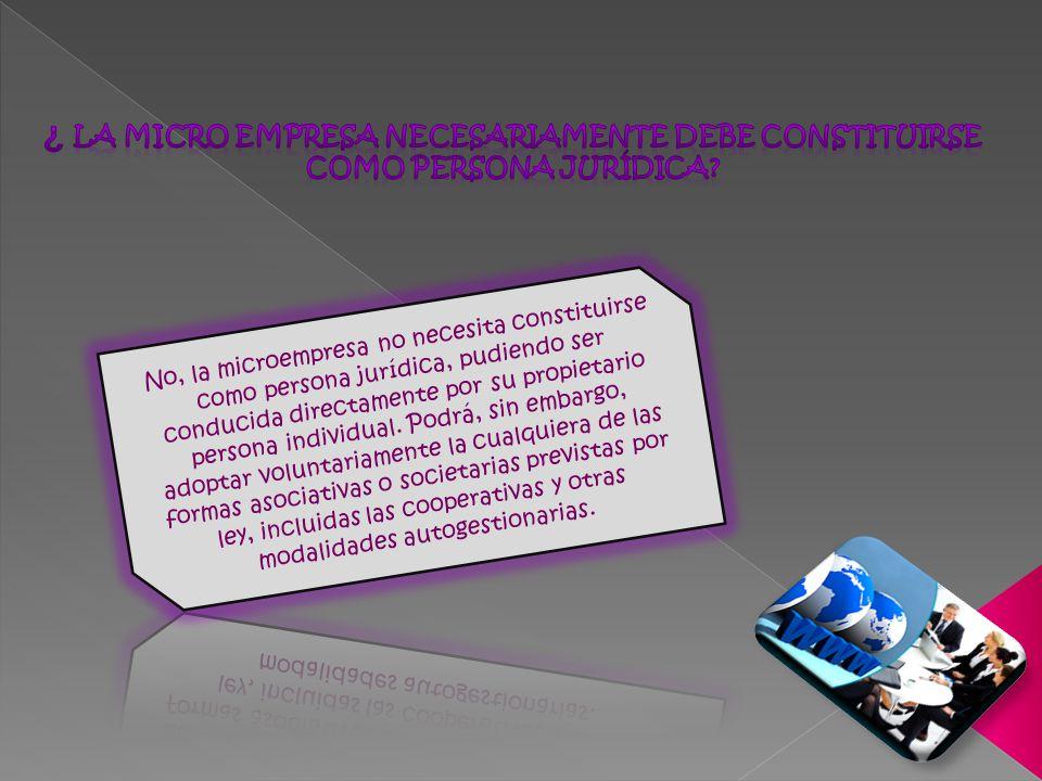 ¿ La micro empresa necesariamente debe constituirse como persona jurídica
