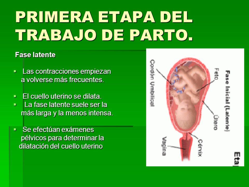 PRIMERA ETAPA DEL TRABAJO DE PARTO.