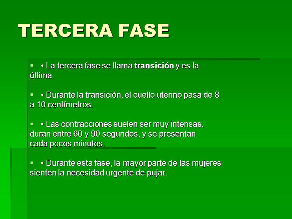 TERCERA FASE • La tercera fase se llama transición y es la última.