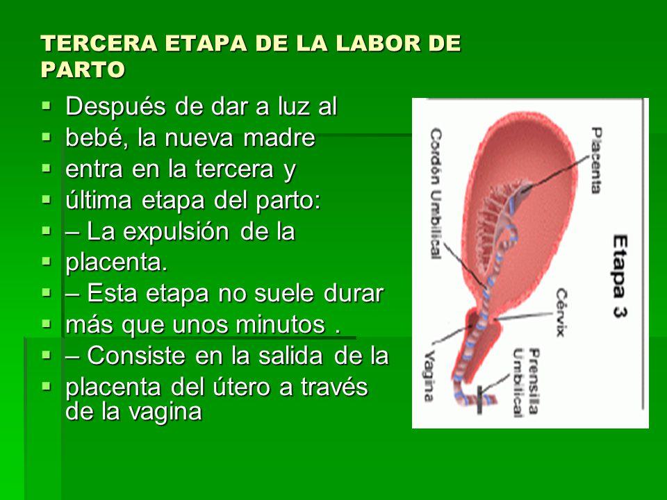 TERCERA ETAPA DE LA LABOR DE PARTO