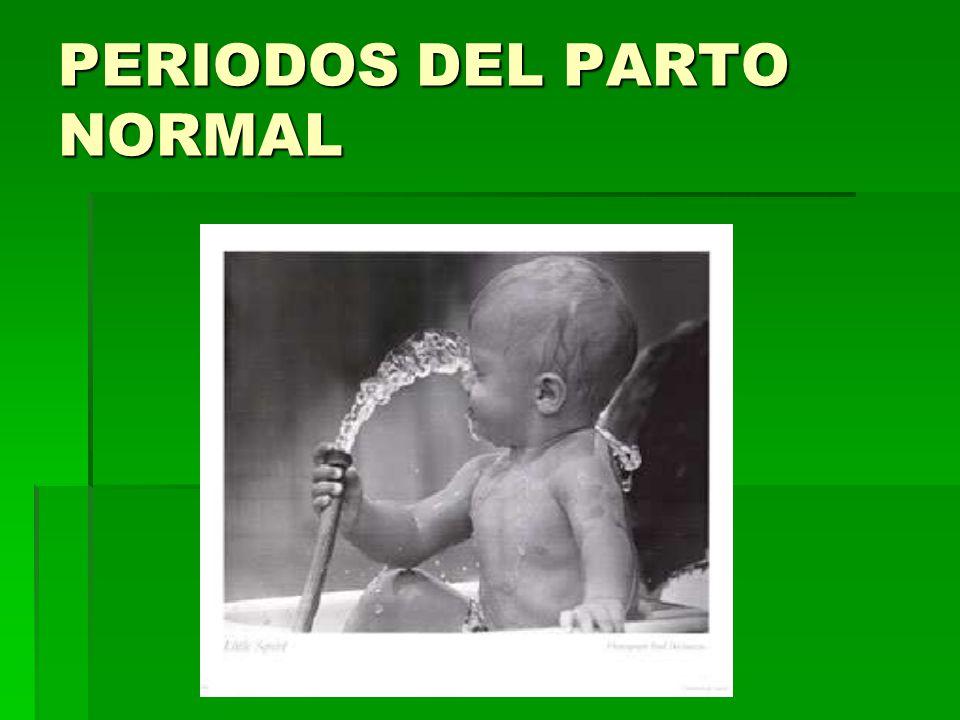 PERIODOS DEL PARTO NORMAL