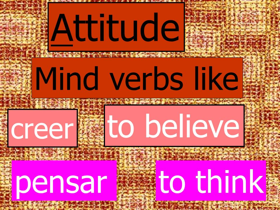 Attitude Mind verbs like to believe creer pensar to think