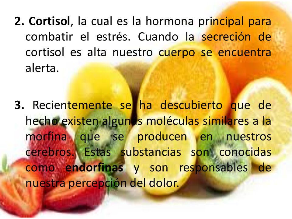 2. Cortisol, la cual es la hormona principal para combatir el estrés