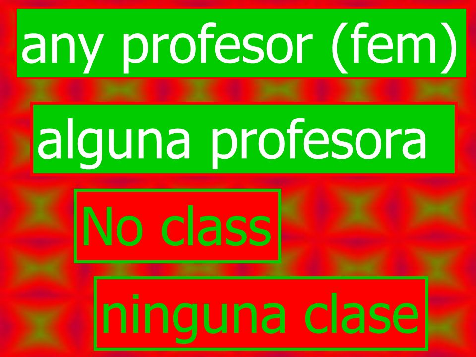 any profesor (fem) alguna profesora No class ninguna clase