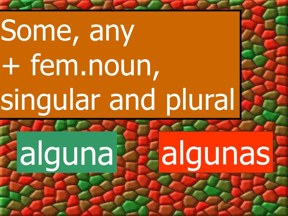 Some, any + fem.noun, singular and plural alguna algunas