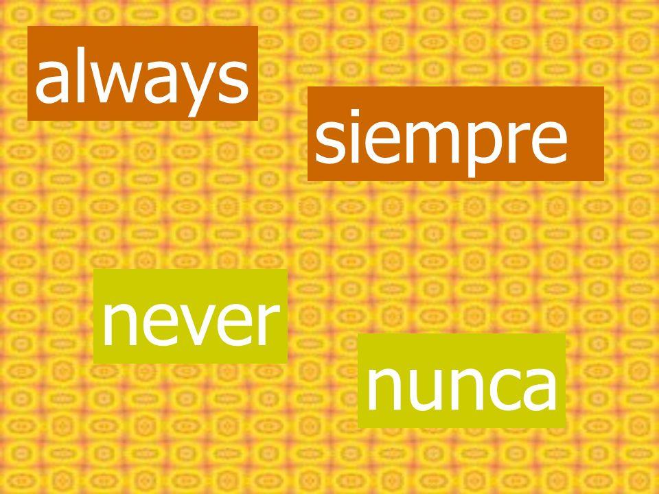 always siempre never nunca