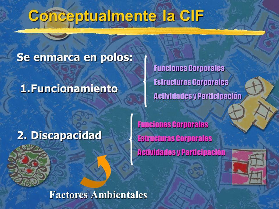 Conceptualmente la CIF