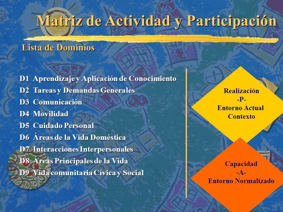 Matriz de Actividad y Participación