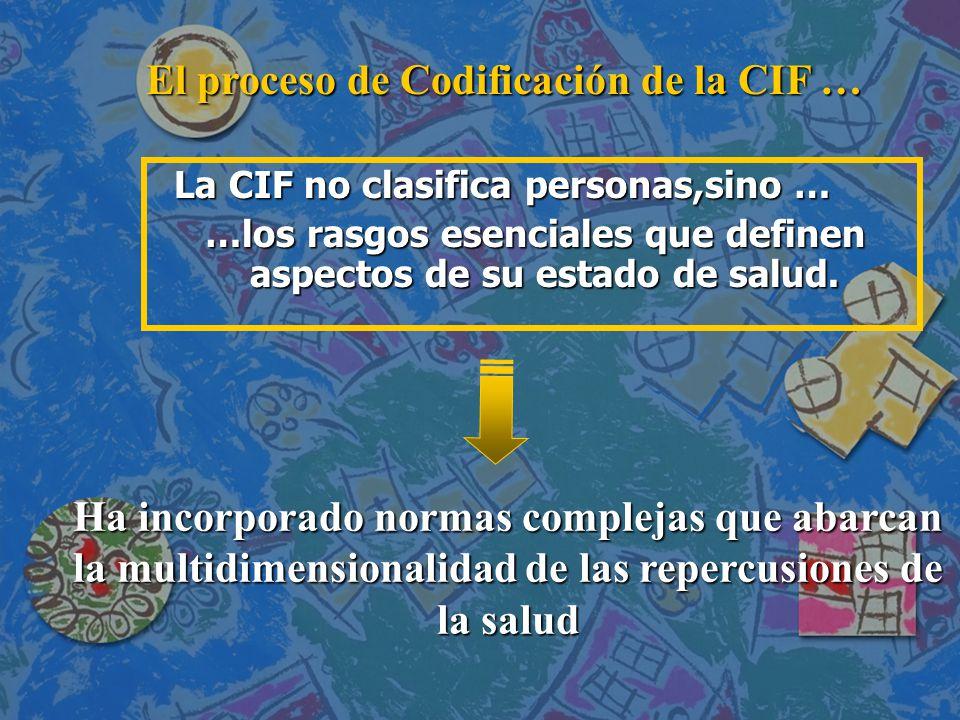 El proceso de Codificación de la CIF …