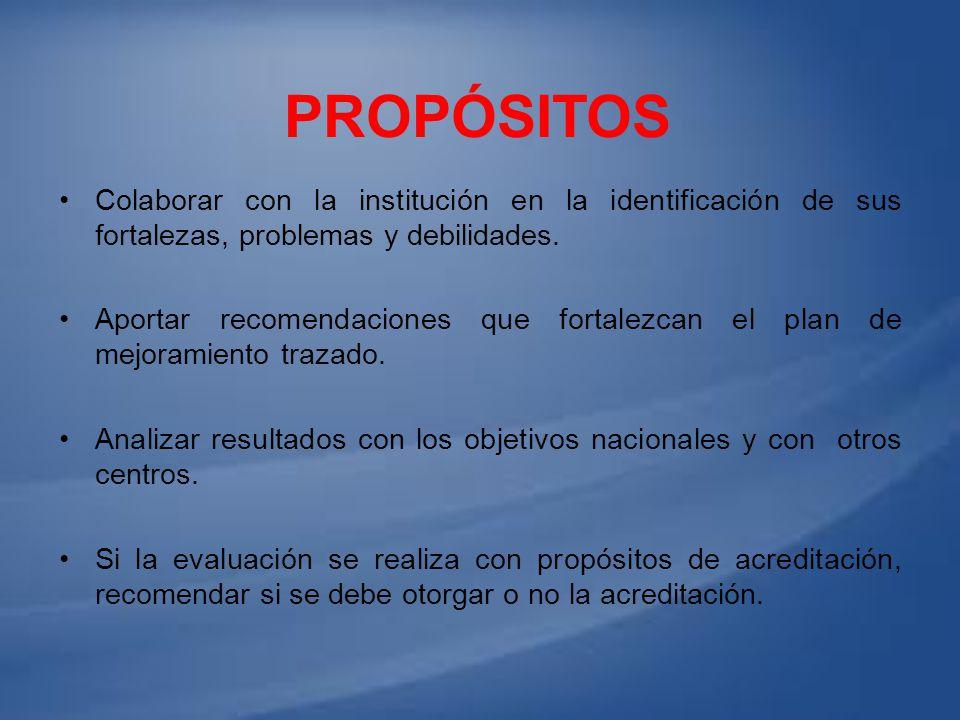 Propósitos Colaborar con la institución en la identificación de sus fortalezas, problemas y debilidades.