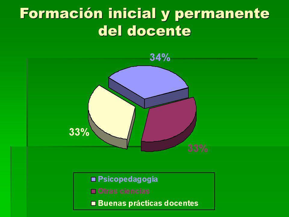 Formación inicial y permanente del docente