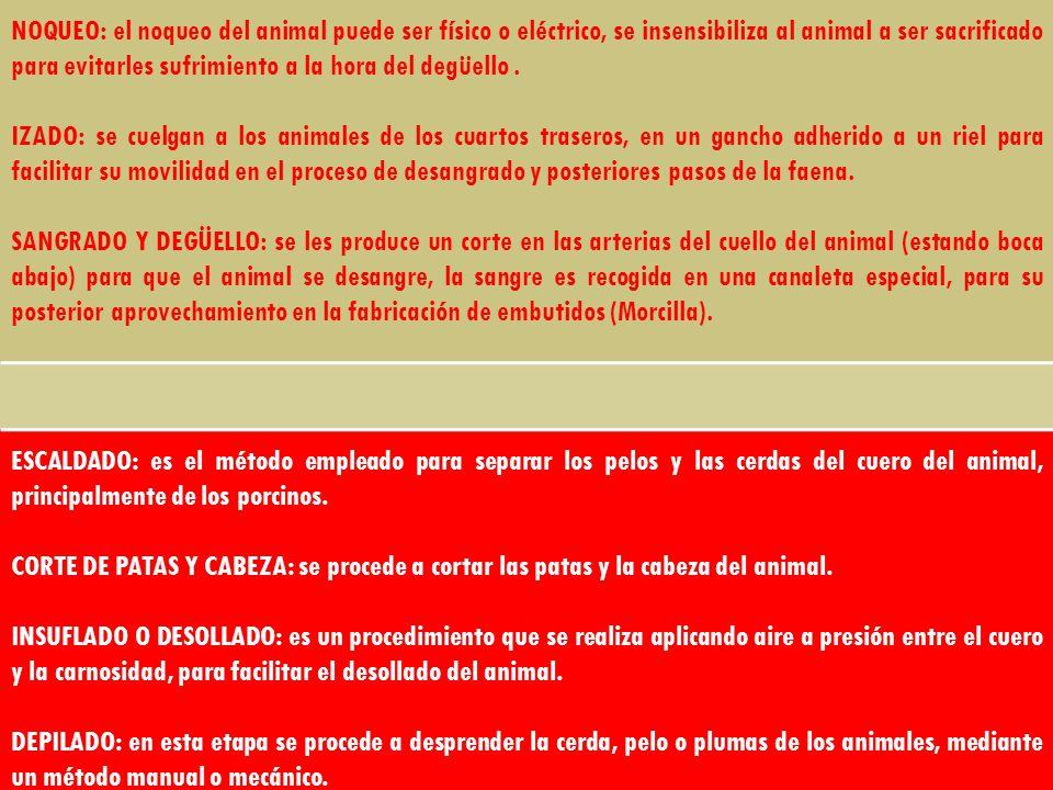 NOQUEO: el noqueo del animal puede ser físico o eléctrico, se insensibiliza al animal a ser sacrificado para evitarles sufrimiento a la hora del degüello .