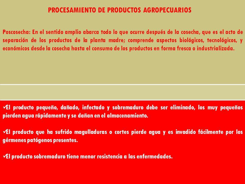 PROCESAMIENTO DE PRODUCTOS AGROPECUARIOS