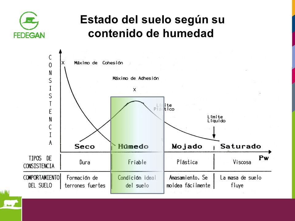 Estado del suelo según su contenido de humedad