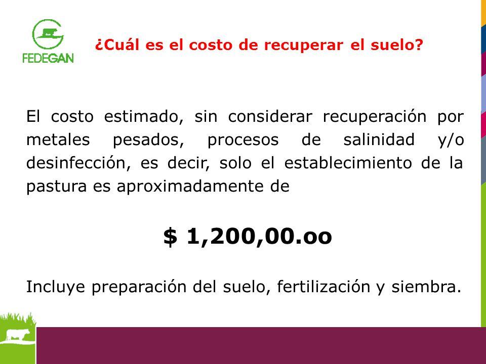 Incluye preparación del suelo, fertilización y siembra.
