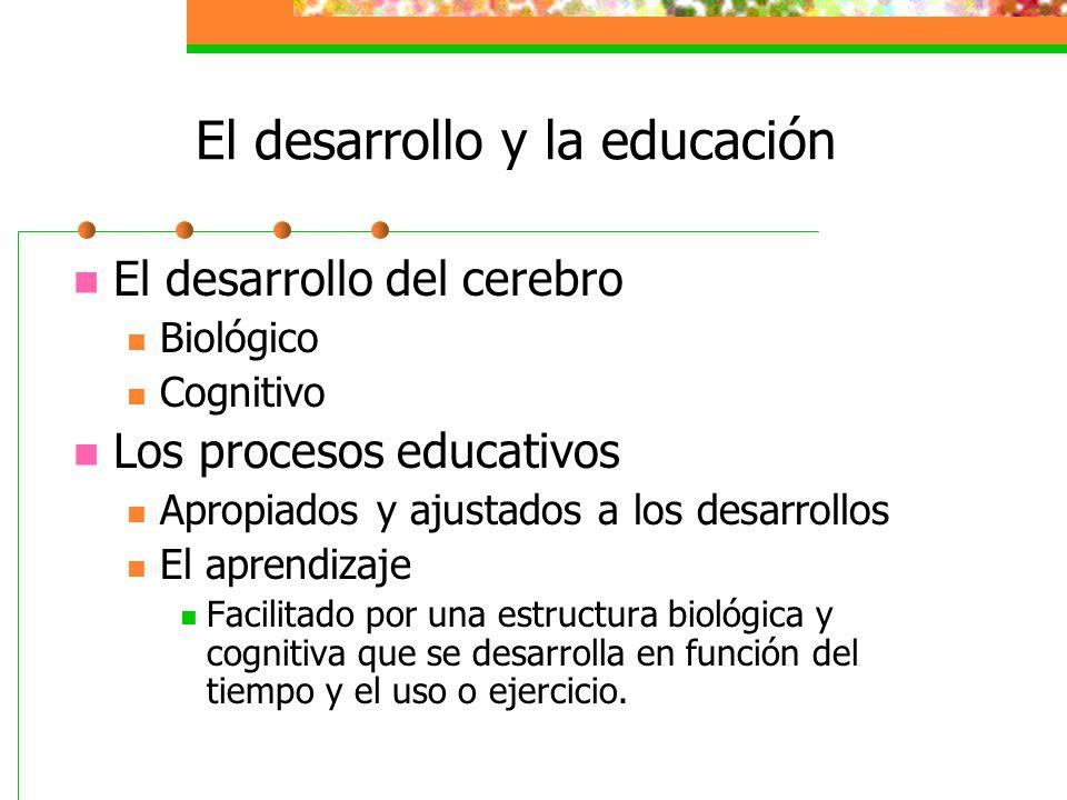 El desarrollo y la educación