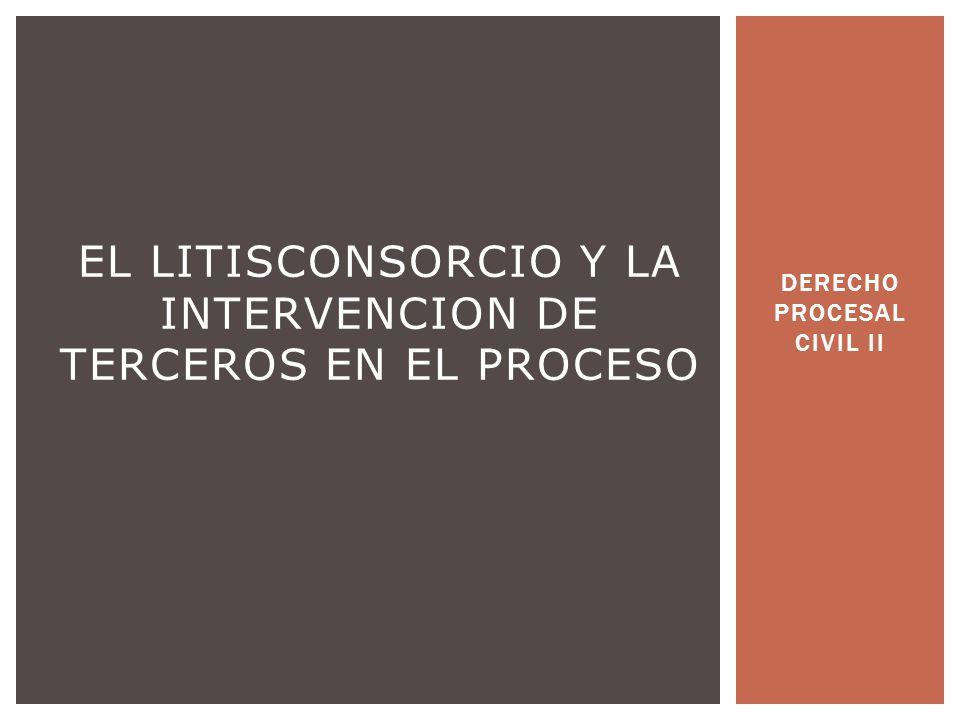 EL LITISCONSORCIO Y LA INTERVENCION DE TERCEROS EN EL PROCESO