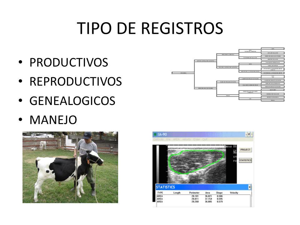 TIPO DE REGISTROS PRODUCTIVOS REPRODUCTIVOS GENEALOGICOS MANEJO