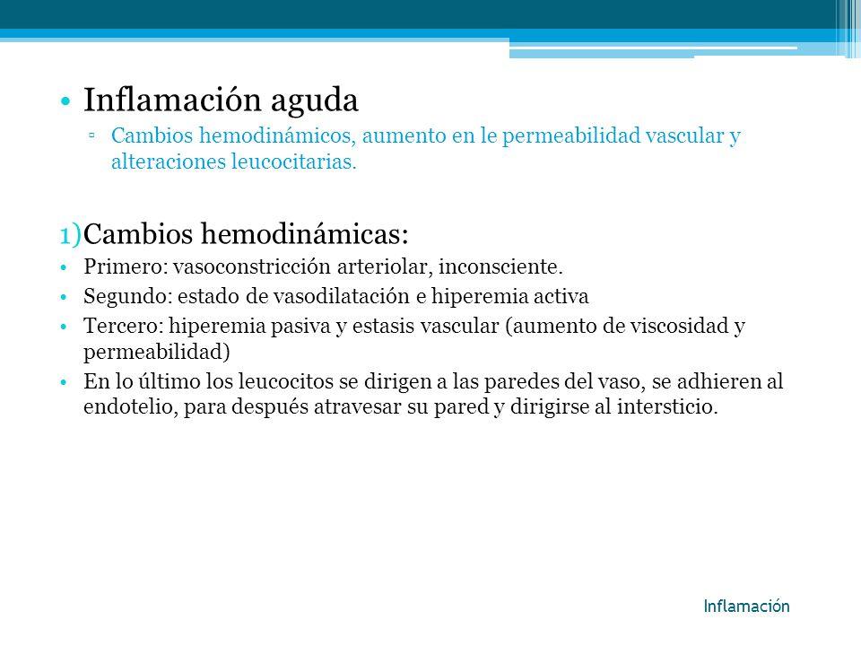 Inflamación aguda Cambios hemodinámicas: