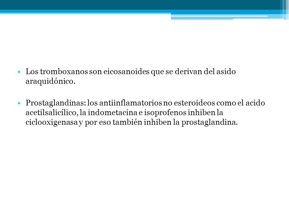 Los tromboxanos son eicosanoides que se derivan del asido araquidónico.