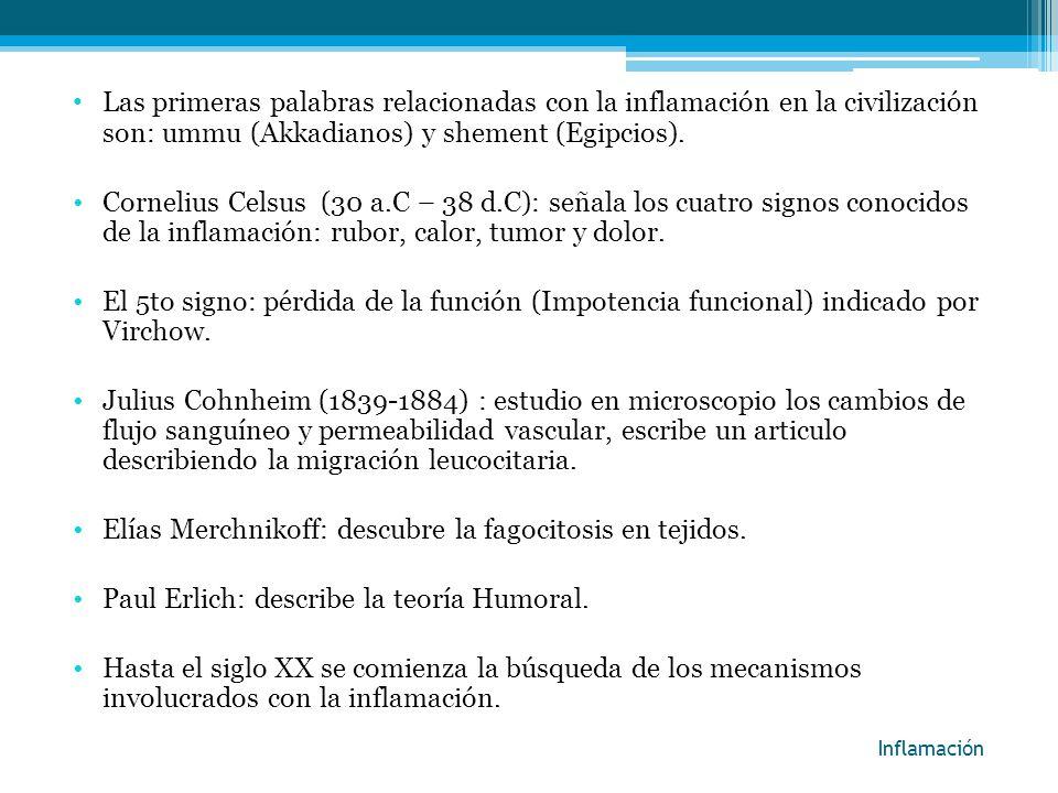 Elías Merchnikoff: descubre la fagocitosis en tejidos.