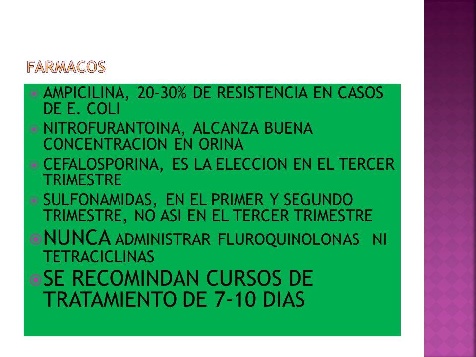 NUNCA ADMINISTRAR FLUROQUINOLONAS NI TETRACICLINAS