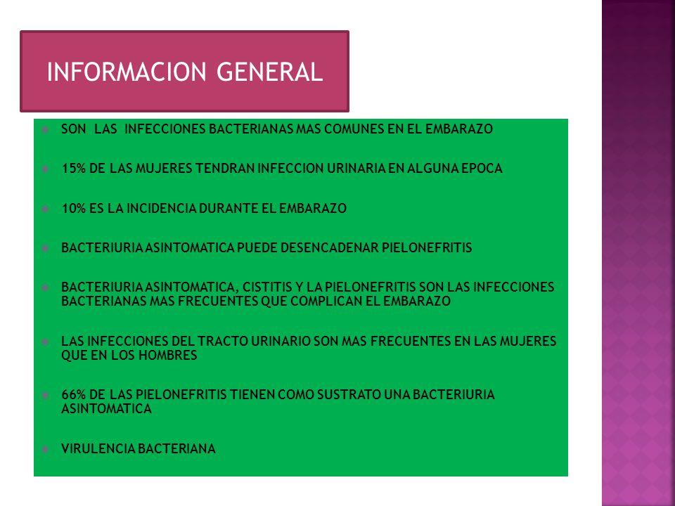 INFORMACION GENERAL INFORMACION GENERAL