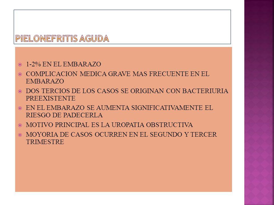 PIELONEFRITIS AGUDA 1-2% EN EL EMBARAZO