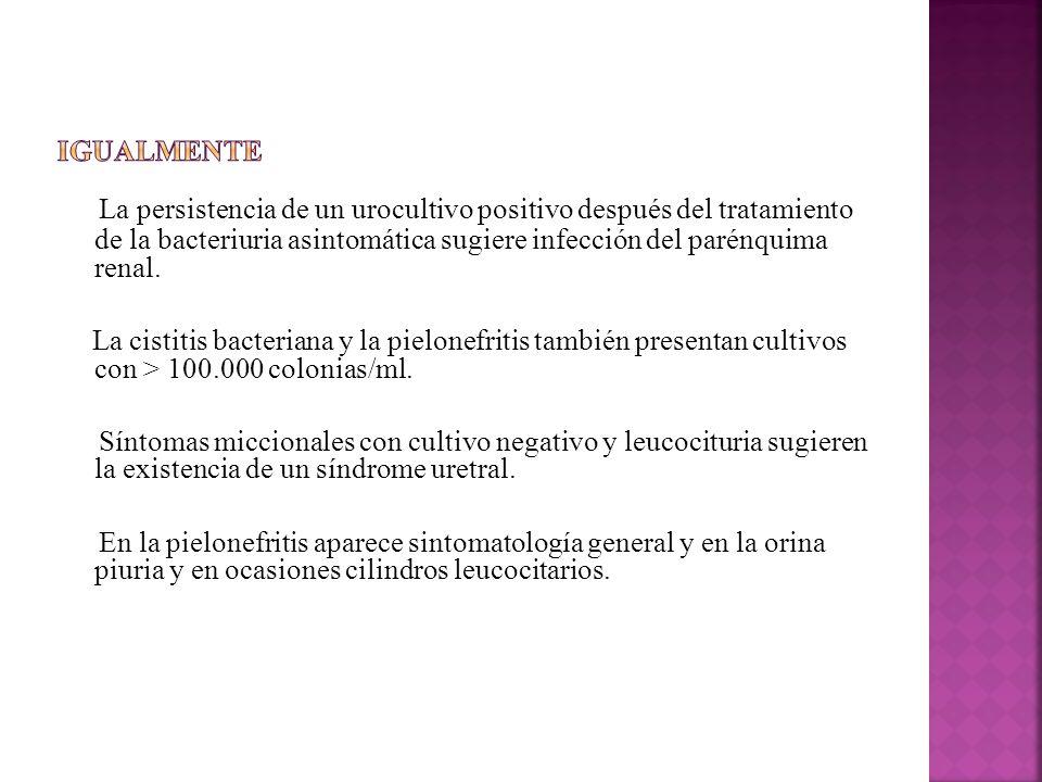 Igualmente La persistencia de un urocultivo positivo después del tratamiento de la bacteriuria asintomática sugiere infección del parénquima renal.