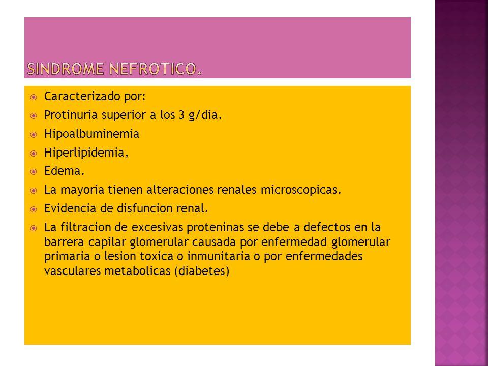 SINDROME NEFROTICO. Caracterizado por: