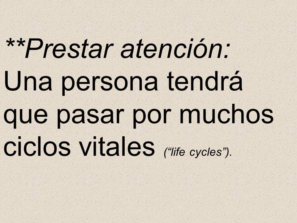 **Prestar atención: Una persona tendrá que pasar por muchos ciclos vitales ( life cycles ).
