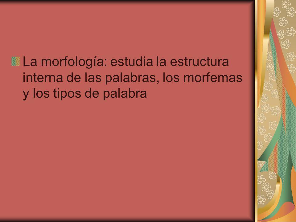 La morfología: estudia la estructura interna de las palabras, los morfemas y los tipos de palabra