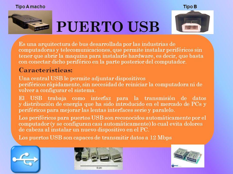 PUERTO USB Características: