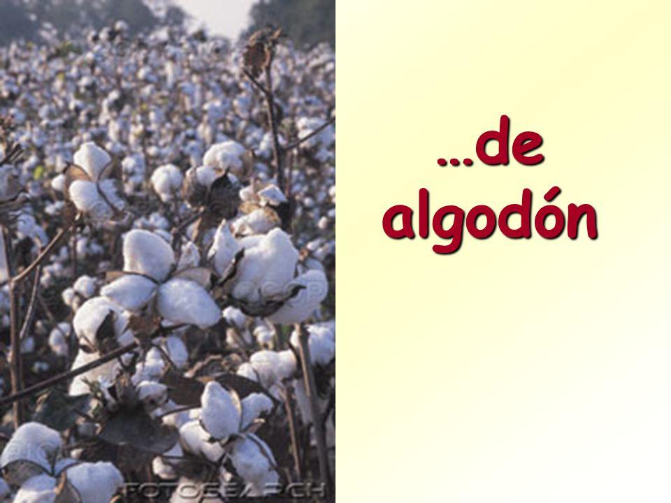 …de algodón