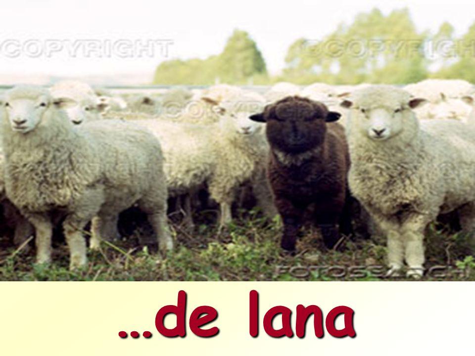 …de lana