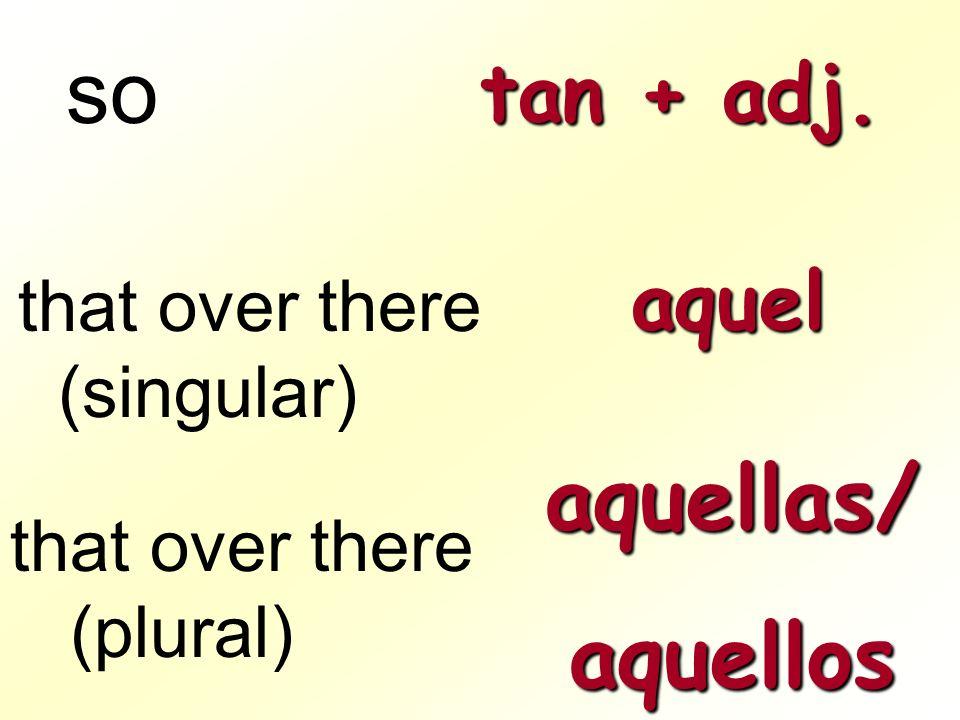 so aquellas/ aquellos tan + adj. aquel that over there (singular)