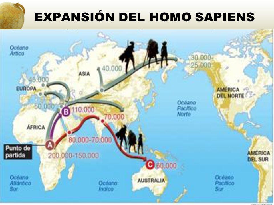 EXPANSIÓN DEL HOMO SAPIENS