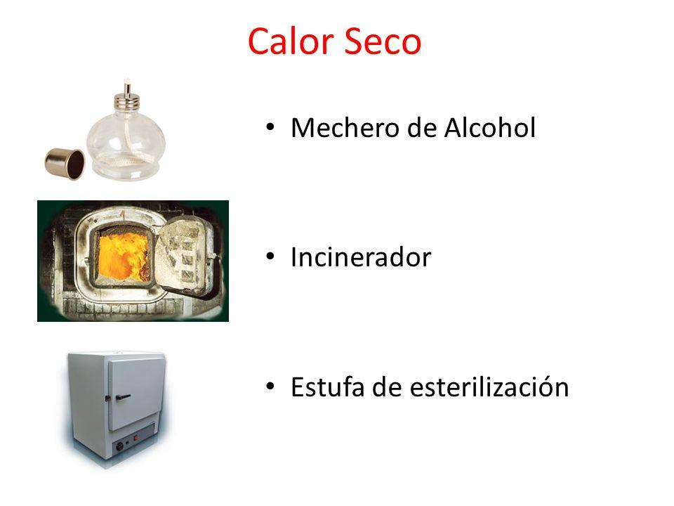 Desinfecci n y esterilizaci n ppt video online descargar - Estufa de calor ...