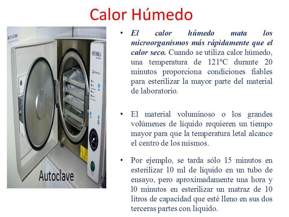 Calor Húmedo
