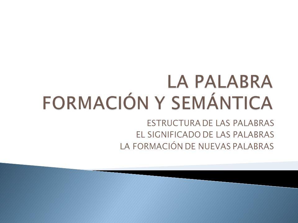LA PALABRA FORMACIÓN Y SEMÁNTICA