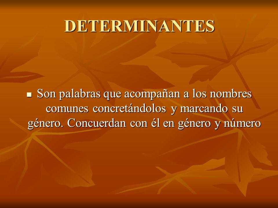 DETERMINANTES Son palabras que acompañan a los nombres comunes concretándolos y marcando su género.