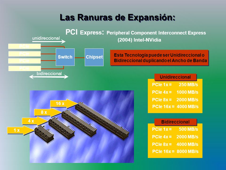 Las Ranuras de Expansión: