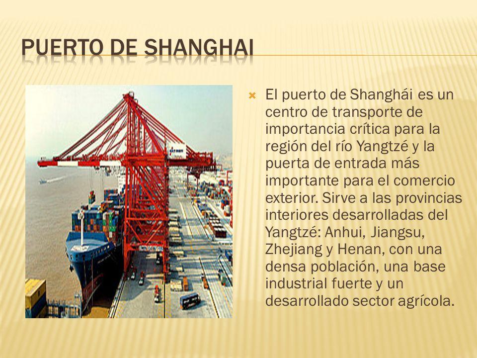PUERTO DE SHANGHAI