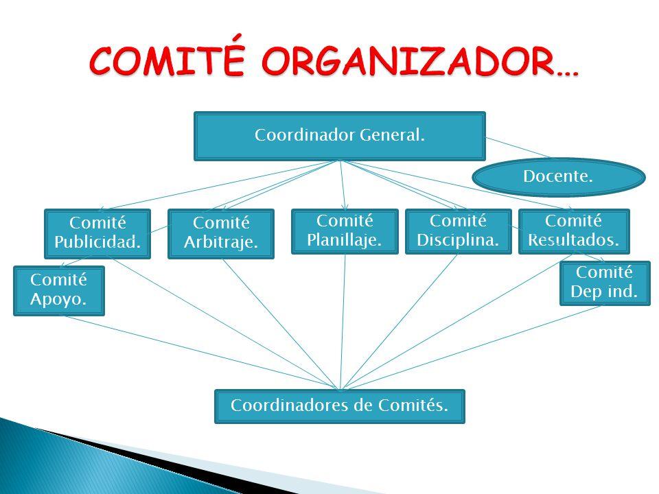 Coordinadores de Comités.