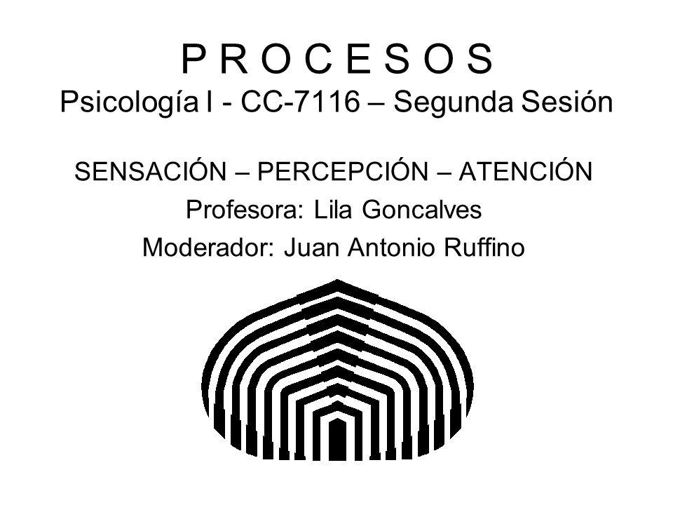 P R O C E S O S Psicología I - CC-7116 – Segunda Sesión